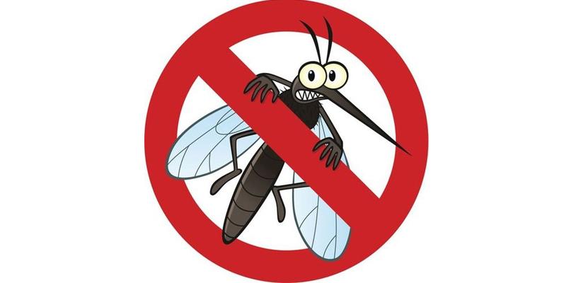 Diệt muỗi vàđuổi côn trùng bảo vệ giađình nhỏ