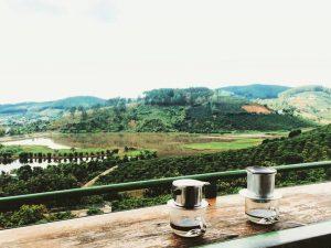 Café Chồn Mê Linh Garden