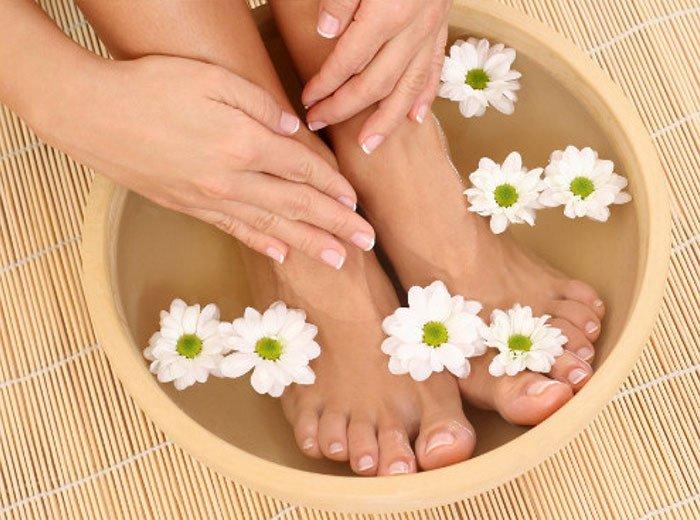 hoa cúc trị hôi chân
