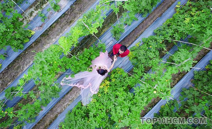 ảnh chụp đẹp bằng flycam