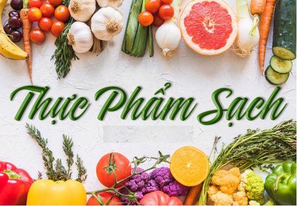 Tấn Tài chuyên cung cấp thực phẩm sạch, rau củ quả giá sỉ hàng đầu Việt Nam
